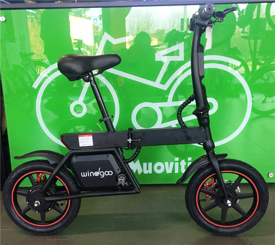 E-BIKE WINDGOO B19